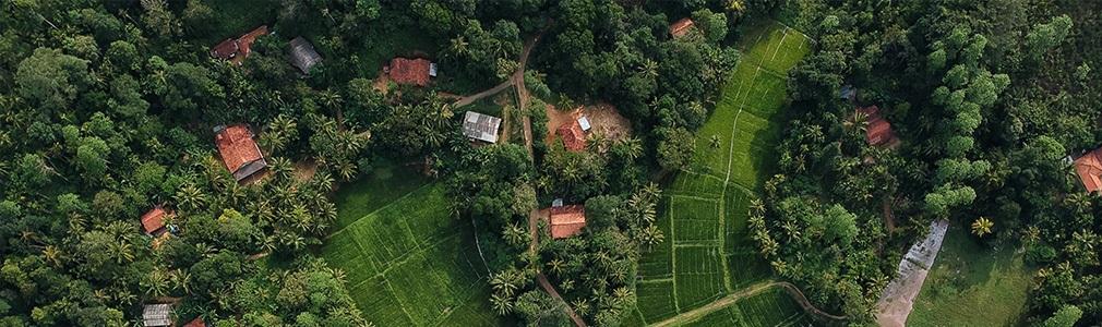 La tierra en Sri Lanka